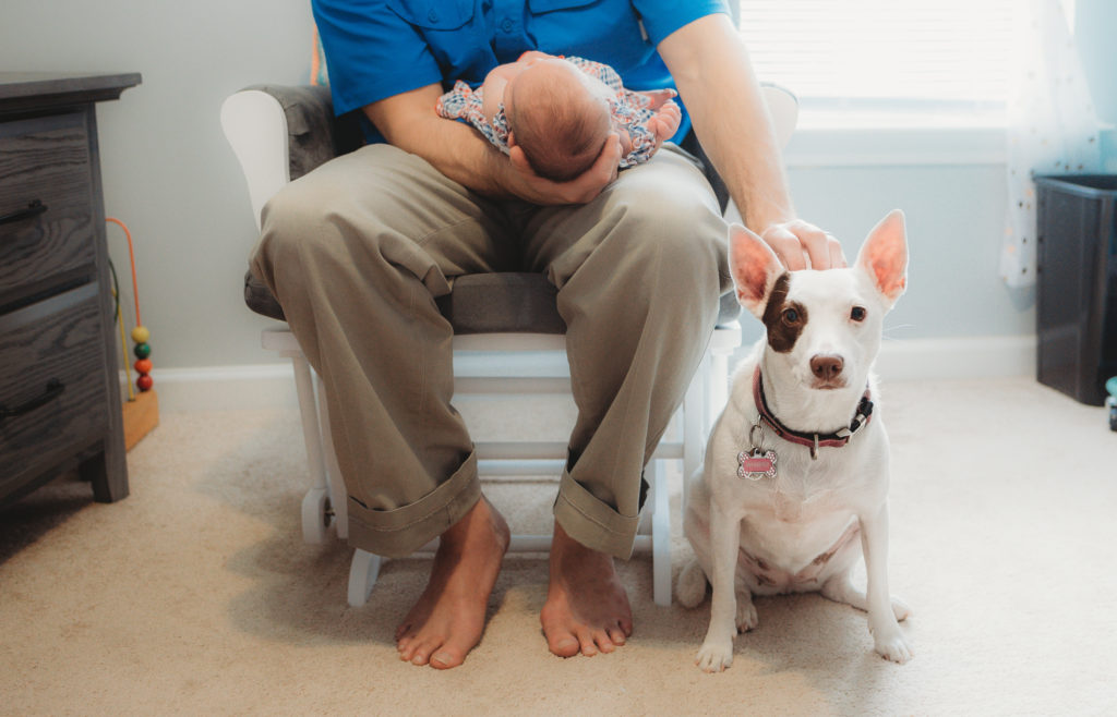 newborn photos with family dog